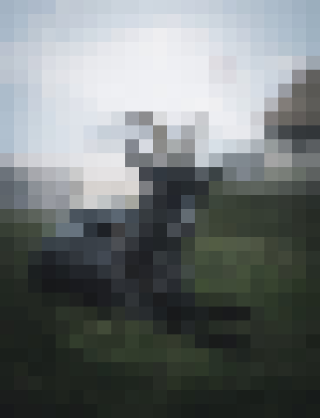 Sky, goat, working animal, goat-antelope (eetiggpm) - example preset