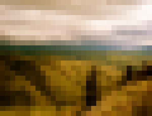 Cloud, sky, plant, natural landscape (qrn8ts2d) - example preset