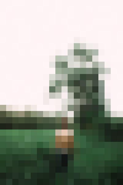 Portrait in nature (fxnkozcs) - example preset