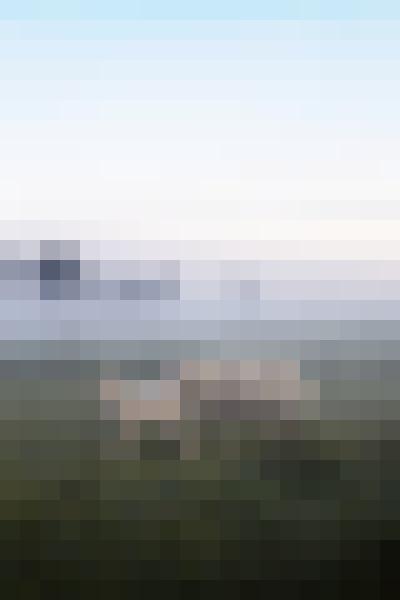 Sky, cloud, plant, fog (kx6rxjxg) - example preset