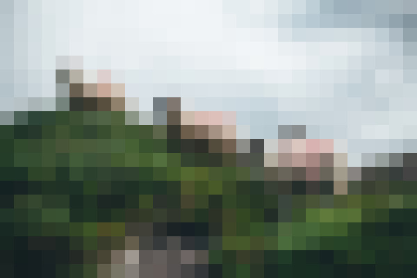 Sky, plant, cloud, natural landscape (vv2uislf) - example preset