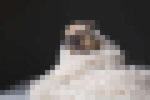 Portrait beard (gayu7igc) - example preset