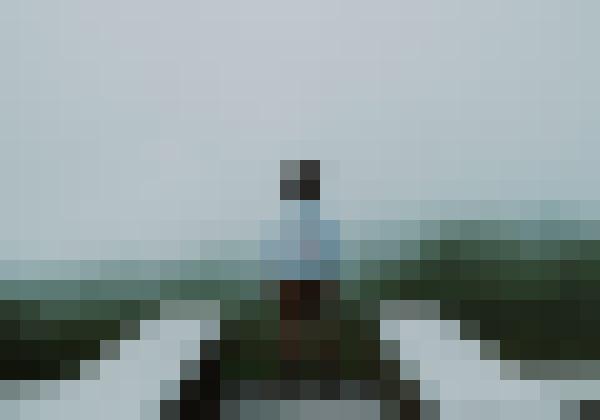 Happy portrait in nature (2xwnj7ms) - example preset