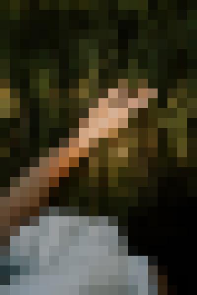 Portrait in nature (npsztxar) - example preset