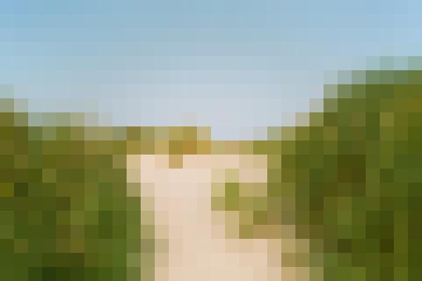 Sky, plant, natural landscape, grass (qgyc3re1) - example preset