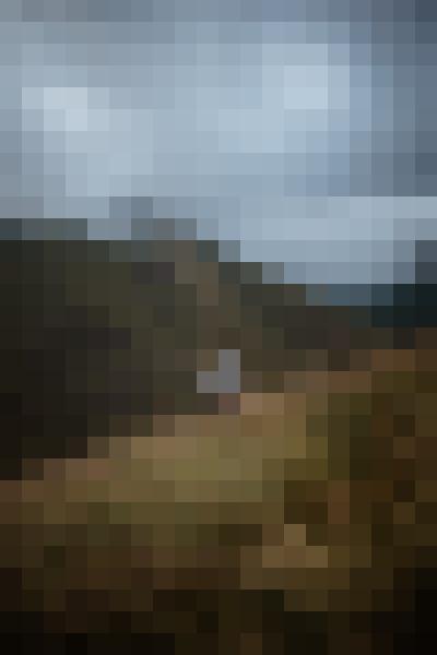 Portrait in nature (ufyz1kxu) - example preset