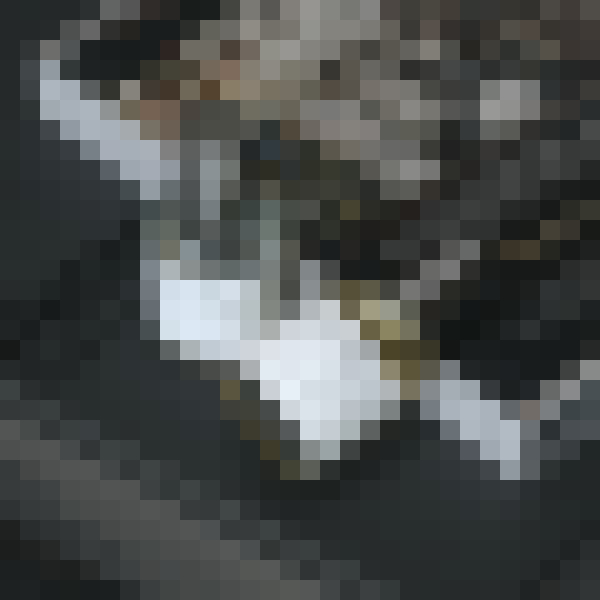 Bottle, cosmetics, fluid, drink (wfqhi8ph) - example preset